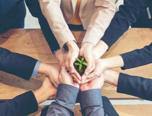 10 Essential Responsibilities of a Non-Profit Board